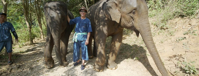 Elephant Camp at Four Seasons Tented Camp, Golden Triangle, Thailand is one of Alan'ın Beğendiği Mekanlar.