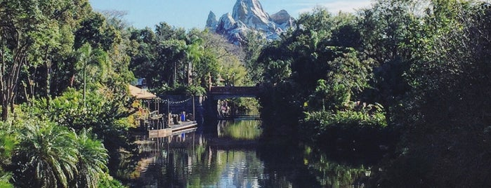 Expedition Everest is one of Alan 님이 좋아한 장소.