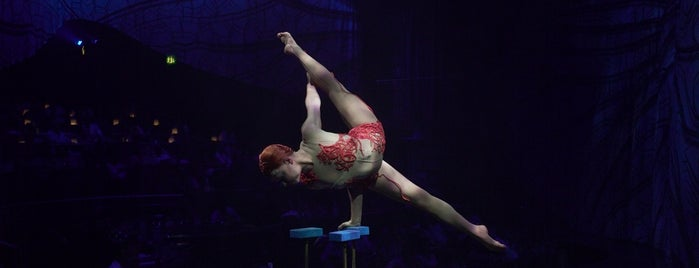 JOYÀ by Cirque Du Soleil is one of Alan : понравившиеся места.
