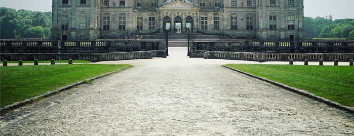 Château de Vaux-le-Vicomte is one of Posti che sono piaciuti a Alan.