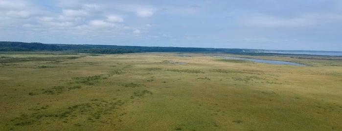 霧多布湿原 is one of アウトドア&景観スポット.
