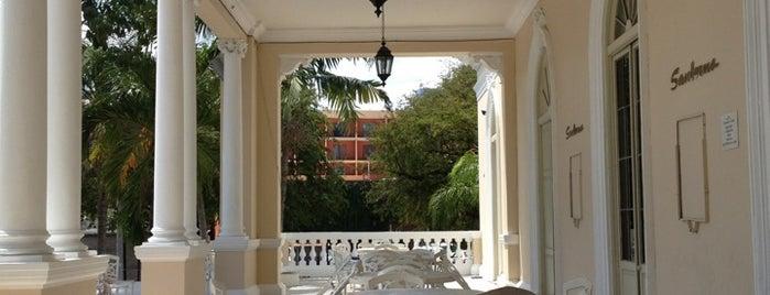 Sanborns is one of Orte, die Rocio Alvarez Arias gefallen.