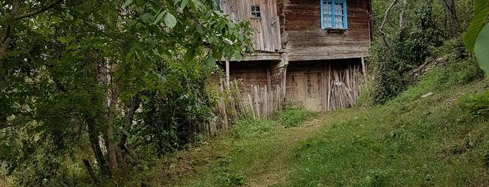 Elmacık Köyü is one of Ulus İlçesi Köyleri.