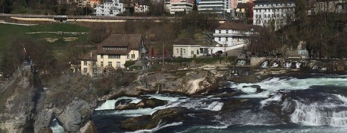 Swiss trip