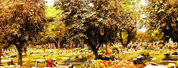 Cemitério São Pedro (Vila Alpina) is one of Locais curtidos por Cledson #timbetalab SDV.