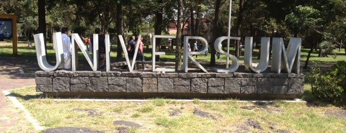 Universum, Museo de las Ciencias is one of Estherさんのお気に入りスポット.