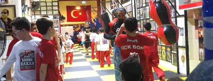 Altın Yumruk Spor Salonu is one of Bandırma.