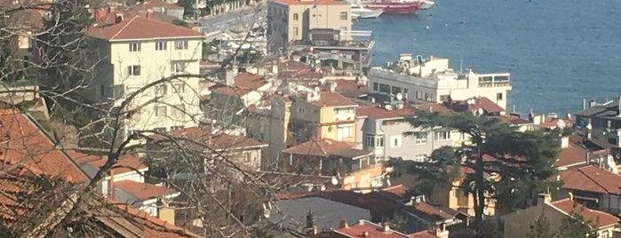 Momo Bebeköy is one of İstanbul.