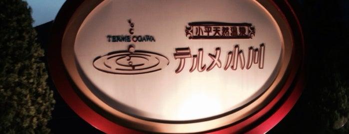 Terme Ogawa is one of สถานที่ที่ Hirorie ถูกใจ.