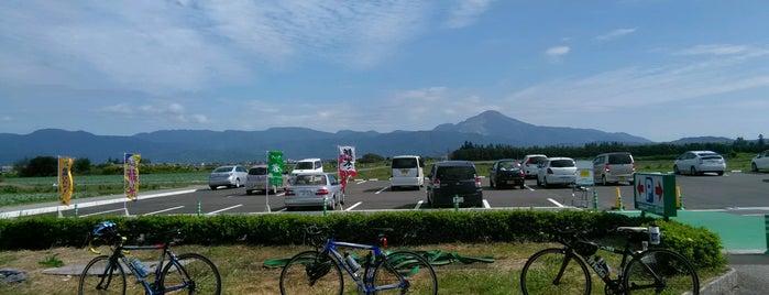 産直びわ みずべの里 is one of สถานที่ที่ Shigeo ถูกใจ.