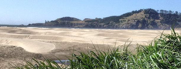 Agate Beach State Park is one of Orte, die Kelsey gefallen.