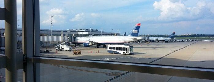 Terminal C is one of Lucy: сохраненные места.
