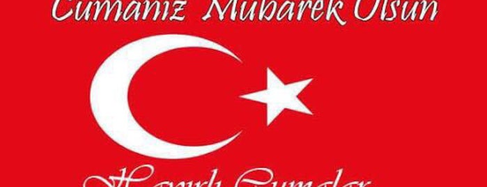 Sınanoglu mondı cevreyolu is one of Yunus'un Beğendiği Mekanlar.
