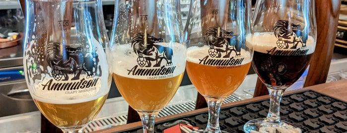 Ammutsøn is one of Bier in Wien.