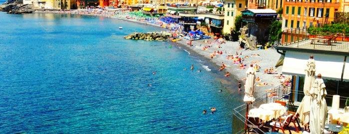 Hotel Cenobio Dei Dogi is one of International: Hotels.