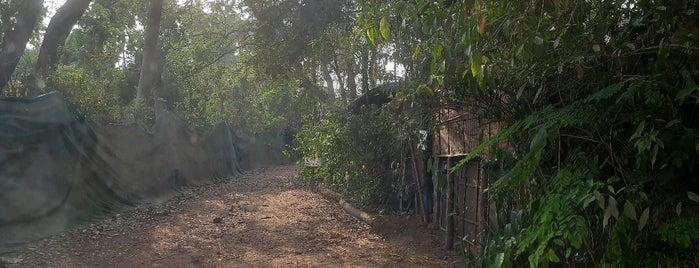 Bhakti Kutir is one of Гоа.