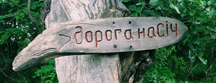 Запорожская Сечь is one of Locais salvos de Катерина.