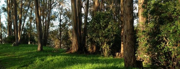 Albany Hill Park is one of Lieux qui ont plu à David.