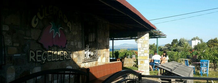 Güler Ada Wine&Jam is one of Bozcada.