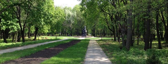Дендропарк ВГАУ is one of VRN.