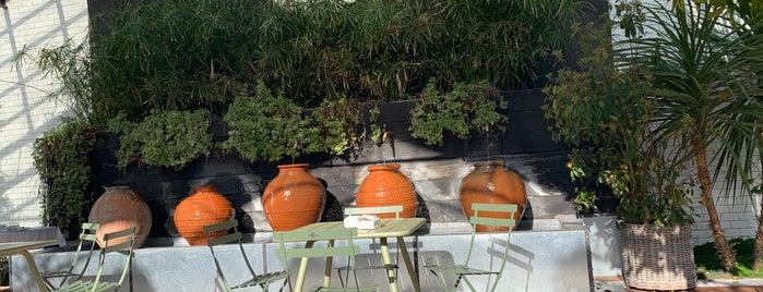 El invernadero de los peñotes is one of Pendientes.