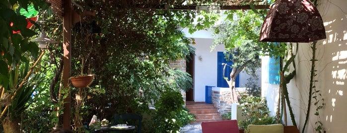 Anna's Organic Shop & Garden Café is one of Sifnos.