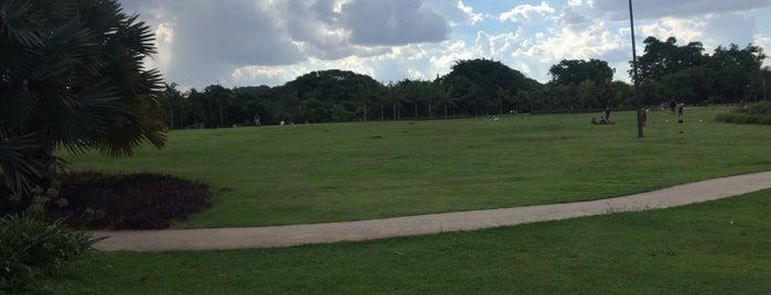 Parque do Povo (Mário Pimenta Camargo) is one of Lugares favoritos de Tania Ramos.