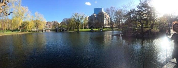 Boston Common is one of Posti che sono piaciuti a Tania Ramos.