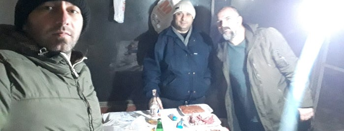 Kavaklık piknik alanı is one of Serkanさんのお気に入りスポット.