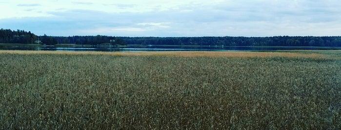 Lintutorni is one of สถานที่ที่ Juha ถูกใจ.