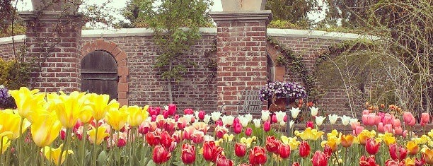 Ashton Gardens is one of One Day (Everywhere) ♥.