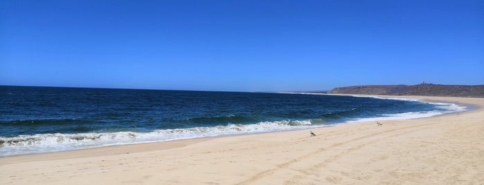 Punta Lobos is one of Tempat yang Disukai Yasu.