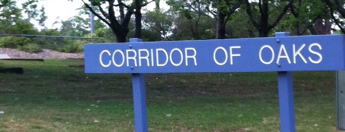 Prime Ministers' Corridor of Oaks is one of Australia - Sydney.