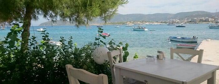 Φύκι Φύκι is one of Athènes II Grèce 🇬🇷.