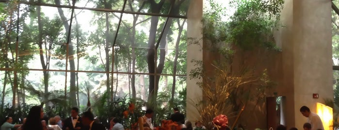 Hunan is one of Fine Dining @ Mexico City.