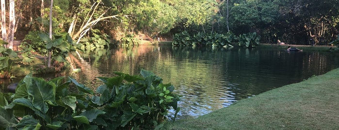 Lagoa Azul is one of Aonde eu vim e recomendo.