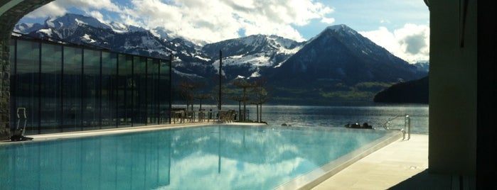 Park Hotel Vitznau is one of Must go hotels.