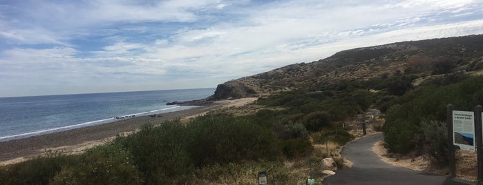 Hallet Cove Conservation Park is one of South Australia (SA).