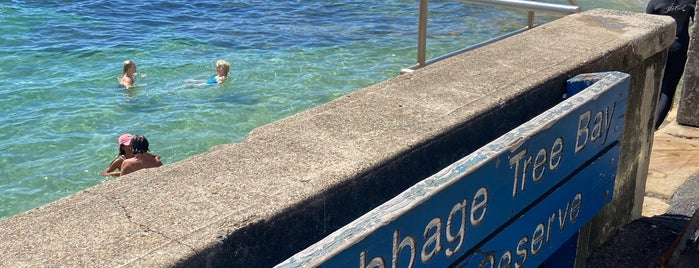 Cabbage Tree Bay Aquatic Reserve is one of Australia - Sydney.