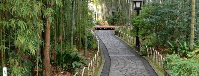 Bamboo Forest Pass is one of 伊豆.
