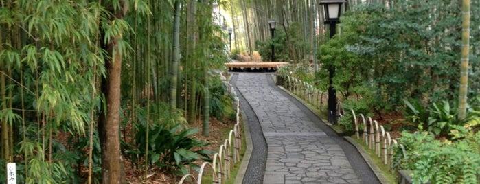 竹林の小径 is one of 伊豆.