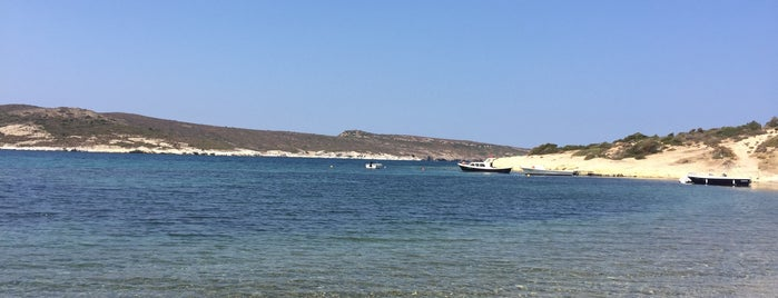 Foça Teras Beach is one of PNR 님이 좋아한 장소.