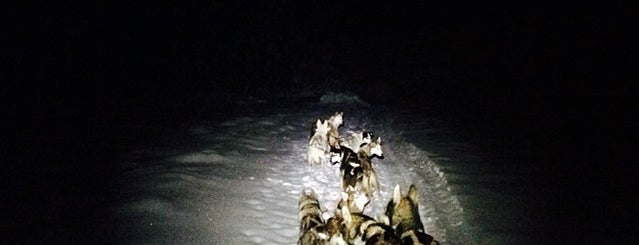 Railroad Trail is one of Mushing.