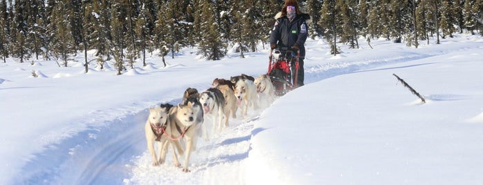 Frying Pan Lake is one of Sled Dog Trails.