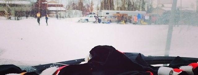 alaskan sled dog & racing assoc. is one of Mushing.