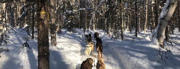 Power-line Trail is one of Mushing.