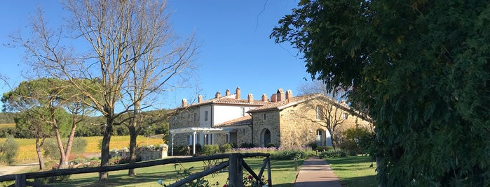 Podere Brizio is one of Tuscany Lifestyle Guide.