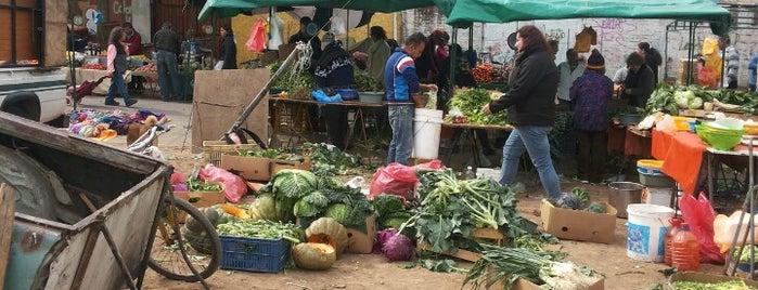 Feria San José is one of Rodrigoさんのお気に入りスポット.