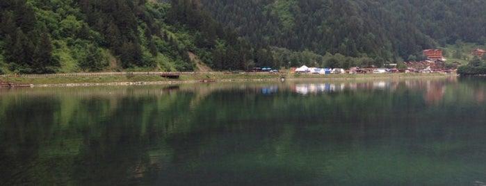Uzungöl is one of สถานที่ที่ Gezimetre ถูกใจ.