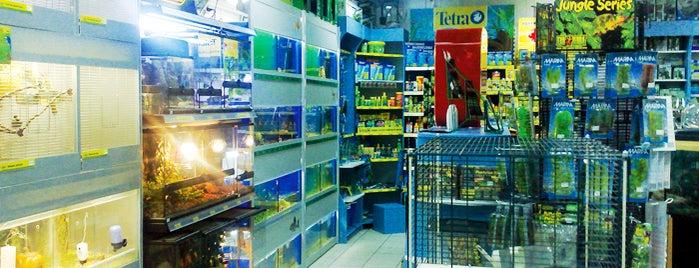 Master Zoo is one of Lugares favoritos de Ника.
